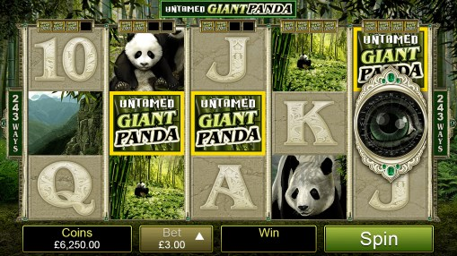 Pokie Untamed Giant Panda